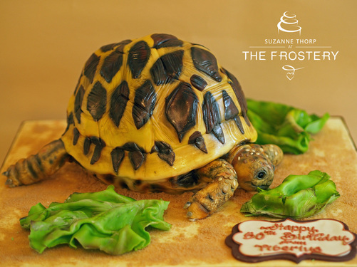 Tortoise birthday cake by The Frostery, Oldham, Lancashire